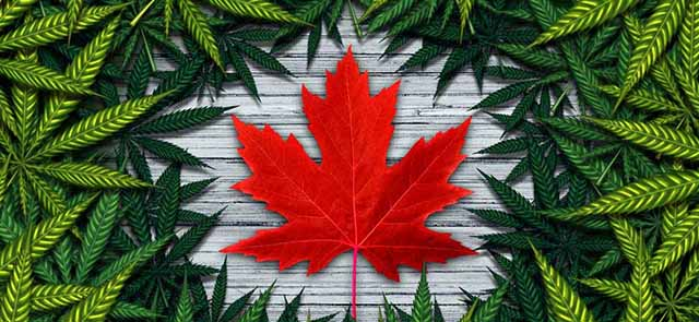The global implications of Canadian cannabis legalization